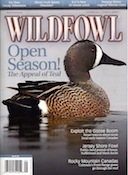 BLUE WINGED TEAL HUNTS