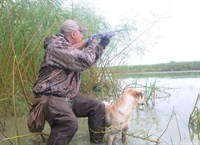 Mississippi Blue Winged Teal Duck Hunting