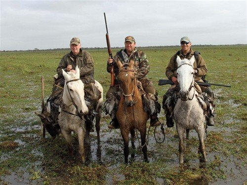 argentina%20duck%20hunting_7346_500x375