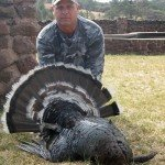 Gould's Wild Turkey Hunting
