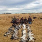 manitoba canada goose hunting 0389