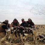 colorado goose hunting lass pass outfit 3456780