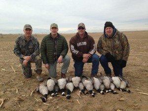 colorado goose hunting