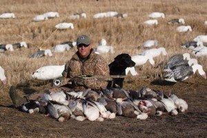 manitoba snow goose hunting eIMG_0011