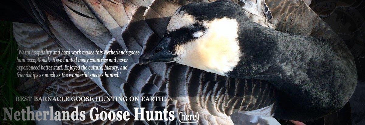 Neatherlands Goose Hunting