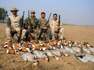 pakistan duck hunt