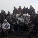 arkansas spring snow goose hunting guides