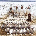 arkansas spring snow goose hunting guide