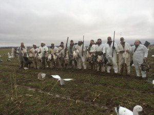 arkansas spring snow goose hunting guide
