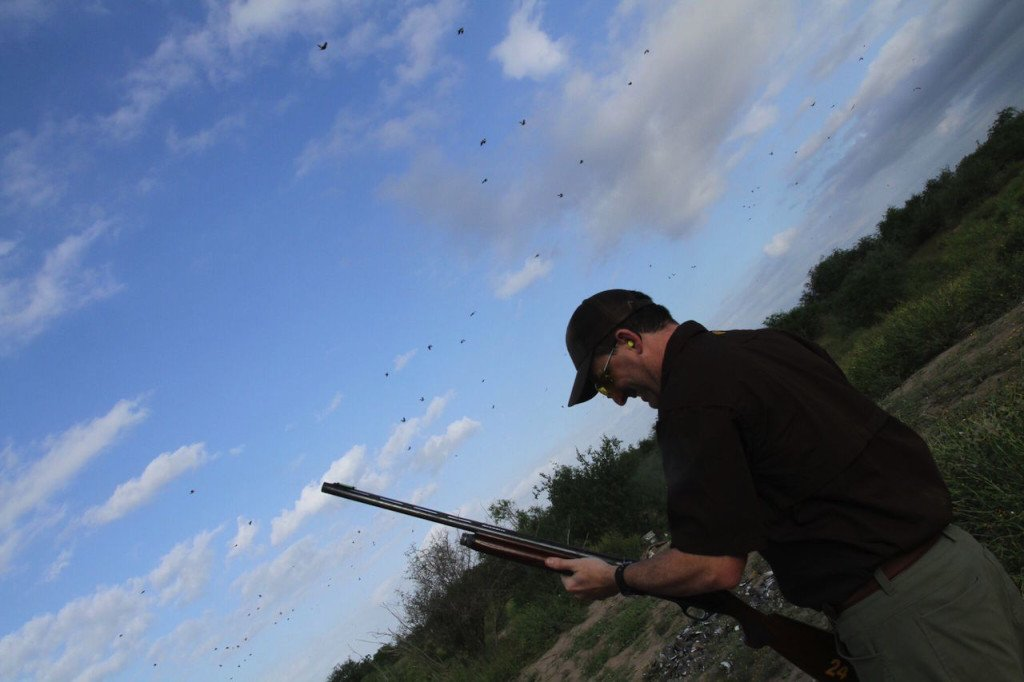 dove hunting mexico