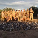 dove hunt mexico