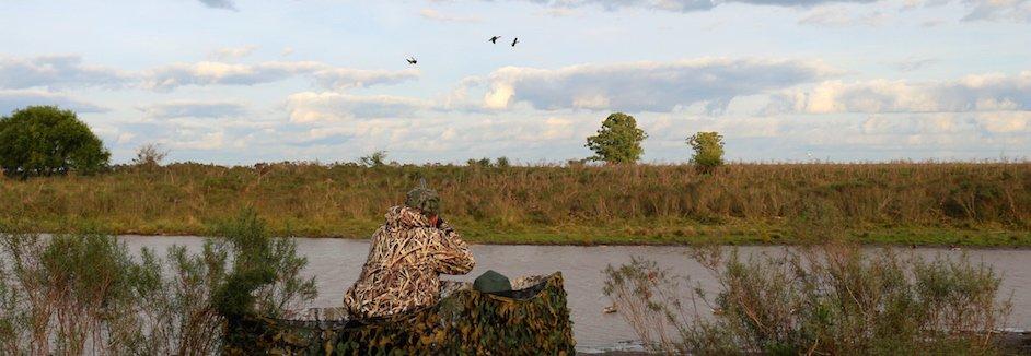 argentina duck hunting los ciebos