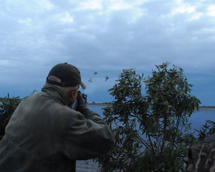 argentina duck hunt la plagaria_6187