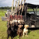 texas teal hunting guide 34567890