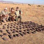 africa bird hunting