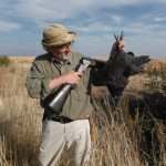 south africa bird hunting