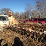 missouri-duck-hunting_0537