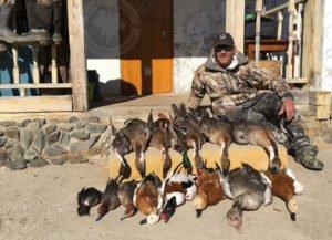 waterfowl hunting mongolia