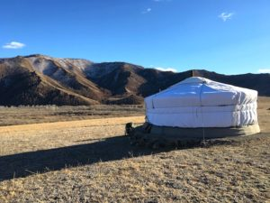 mongolia duck hunting camp
