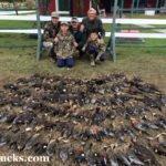 argentina duck hunt