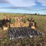 new zealand duck hunting