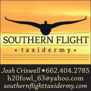 Southern Flight Taxidermy