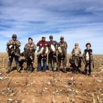 texas goose hunting