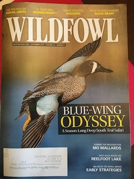 bluewinged teal hunting guides