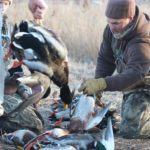 KANSAS DUCK HUNTING GUIDES