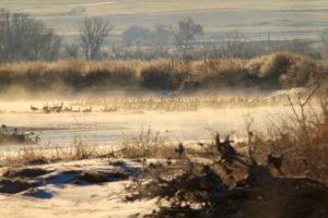 wyoming goose hunting