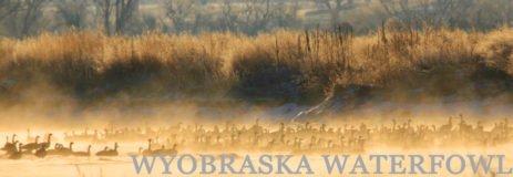 Wyoming Waterfowl Hunting