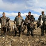 WYOMING GOOSE HUNTING