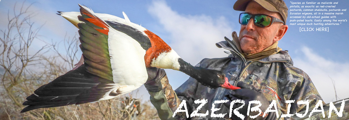 Getducks.com AZERBAIJAN DUCK HUNTS