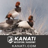 Kanati Elite Taxidermy Studio