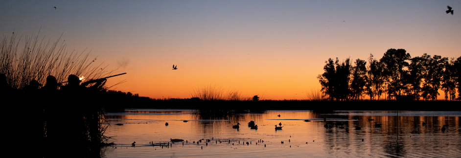 Las Flores Argentina duck hunting