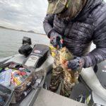 Mexico duck hunt fishing combo