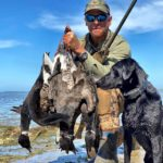 Mexico Pacific Brant Hunting