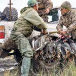 best duck hunts in argentina