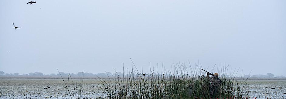 rio salado argentina duck hunting photos