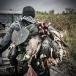 argentina duck hunt argentina rio salado